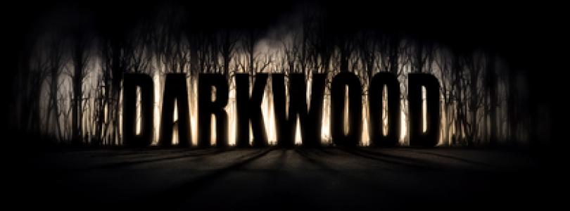 Darkwood PS4 trailer